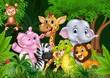 Cute animal africa in the jungle