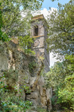 ruined castle in a wood