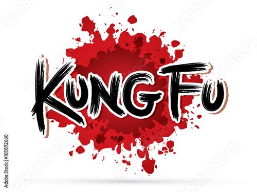 Fototapeta Kung fu text on splash blood graphic vector.