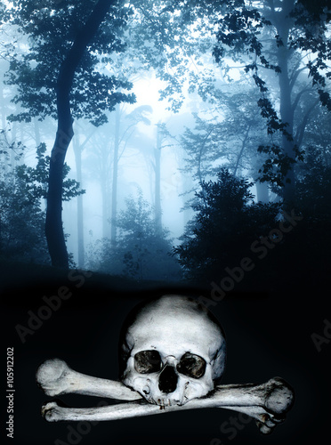 Poster Skull and bones in the dark foggy forest