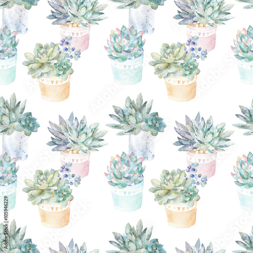 Floral seamless pattern.Succulents in pots. - 105946229