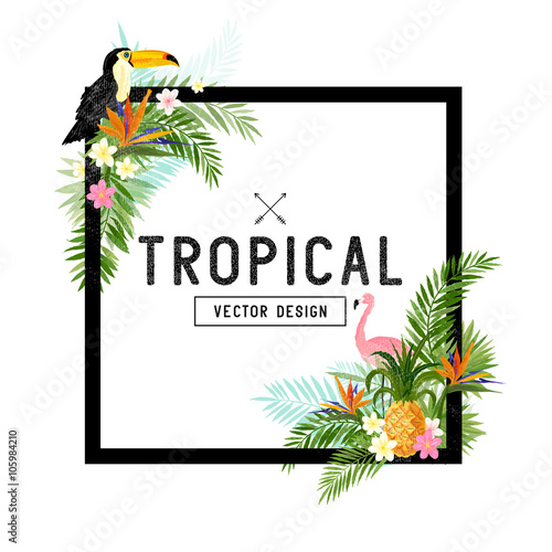 Tropical Design Elements. Various tropical objects including Toucan bird, pineapple and palm leaves. - 105984210