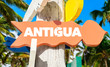 Antigua signpost with palm trees