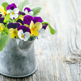 Violet pansies bouquet - 106061288