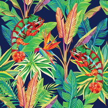 Kameleon w dżungli bez szwu tła