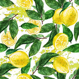 Fototapety Watercolor seamless pattern - Lemon
