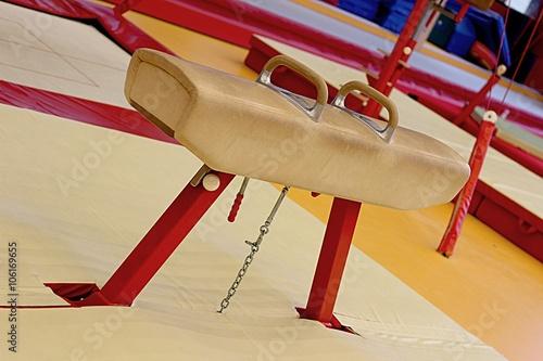 Gymnastic equipment Canvas Print
