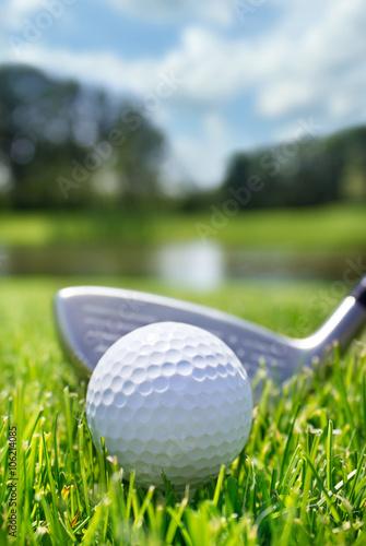 Fototapeta Golf club and ball in grass