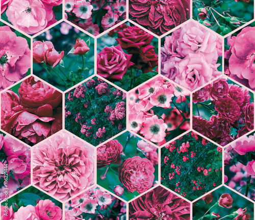 Collage of pink and red roses. The polygonal style. Pattern, seamless - 106221444