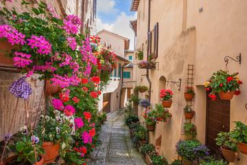 Vicolo con fiori, Spello © alexandro900