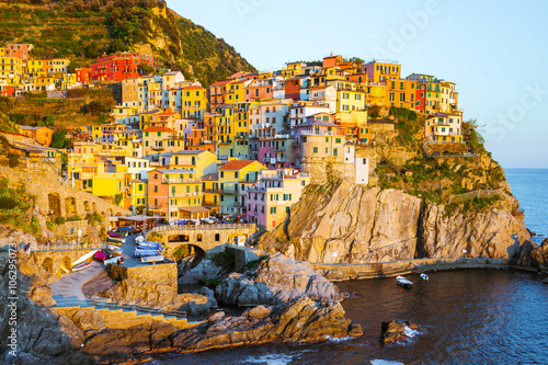 Cinque Terre - Manarola village in summer Poster