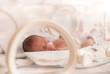 Premature newborn  baby girl