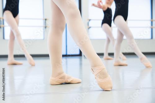 ballet shoes Plakát