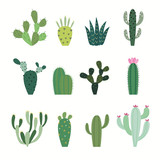 Cactus collection in vector illustration