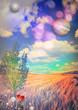 Obrazy na płótnie, fototapety, zdjęcia, fotoobrazy drukowane : Corn fied,flowers  and tree