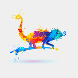 Chameleon. Splash paint