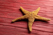 Starfish on a red wooden table