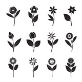 Fototapety Set of black Flowers and Leafs. Vector Illustration.
