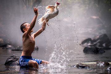 The boy catching duck at waterfall,Thailand