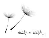 Make a wish card with dandelion fluff
