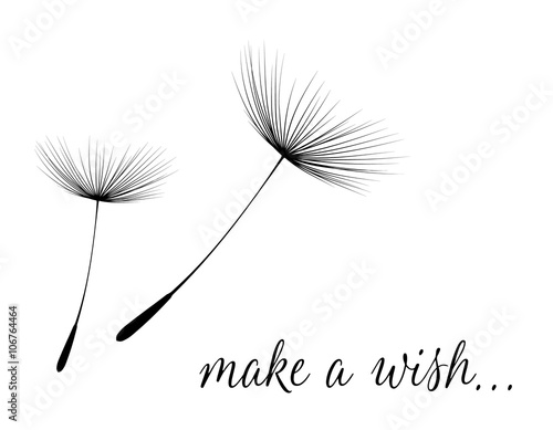 Make a wish card with dandelion fluff - 106764464