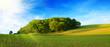 Obrazy na płótnie, fototapety, zdjęcia, fotoobrazy drukowane : Summer landscape with green grass and sun.