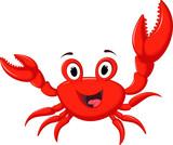 funny cartoon crab