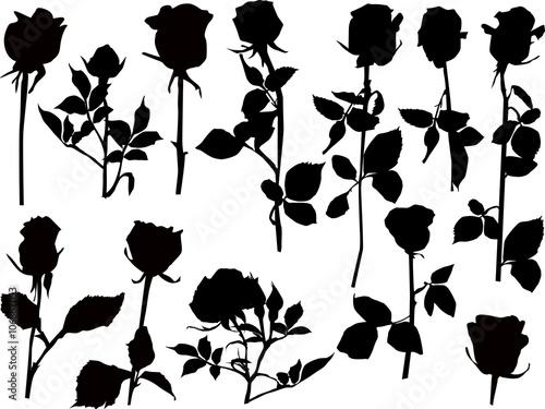 Zdjęcia na płótnie, fototapety, obrazy : twelve black isolated roses