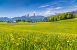 Fototapety Idyllic landscape in the Alps with blooming meadows and mountain tops