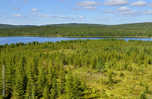 Poster Northern landscape with blue lake. Finland, Lapland
