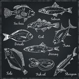 Fototapety Fish collection: Dorado, Fish Eel, Tuna, Salmon, Halibut, Herrin
