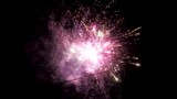 wedding Firework