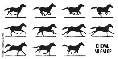Cheval au galop - décomposition