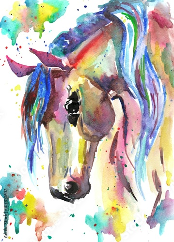 Naklejka Horse head. Color watercolor illustration. Hand drawn