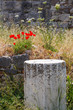 Obrazy na płótnie, fototapety, zdjęcia, fotoobrazy drukowane : Ruins, Kos Town, Kos Islans, Greece