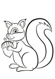 Coloring page. Little cute squirrel stands and holds an acorn in the hands. Squirrel smiles.