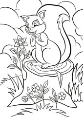 Coloring page. Little cute squirrel stands on the stump and looks at the beautiful flower. Flower grows from the stump. There are bushes, grass and flowers around.