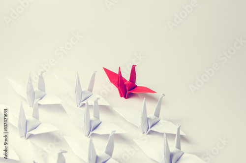 Close up red bird leading among white, Leadership concept, retro filter, copy space Poster
