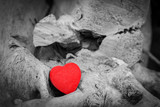 Red heart in a tree trunk and branches. Love symbol. Red against black and white - 107518483