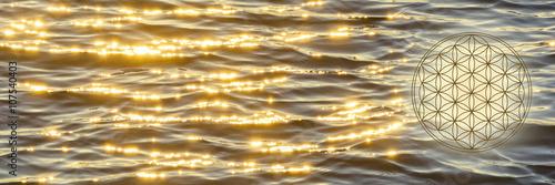 Blume des Lebens in der Abendstimmung auf dem Meer Poster