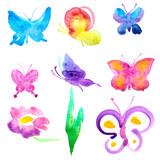 butterflies design © aboard