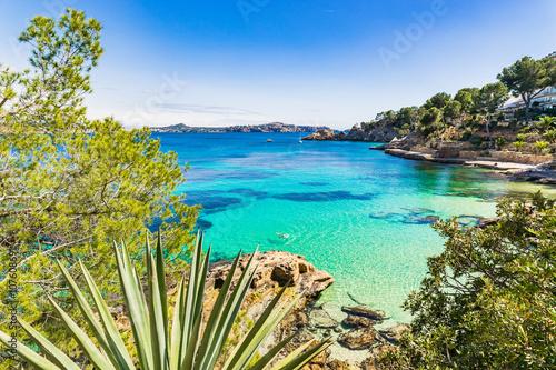 Fotobehang Eilanden Turquoise sea bay Cala Fornells Majorca Spain