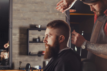 Bearded Man In Barbershop