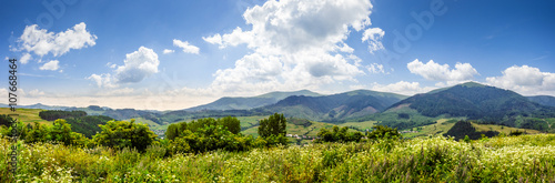 meadow with flowers in mountains - 107668464
