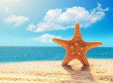 Fototapety Summer beach.  Starfish on a beach sand against the background of the ocean.