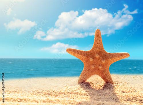 Summer beach. Starfish on a beach sand against the background of the ocean.