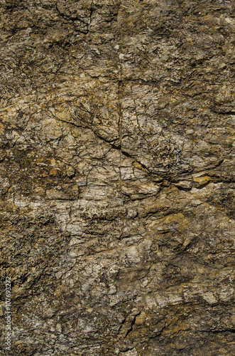 stone texture surface Poster