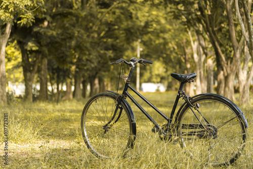 Foto op Plexiglas Fiets Vintage Bicycle, Old bicycle