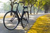Vintage Bicycle, Old bicycle