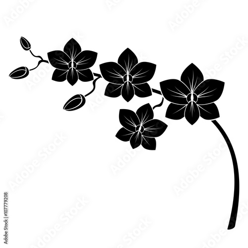 Naklejka orchid branch silhouette vector for design